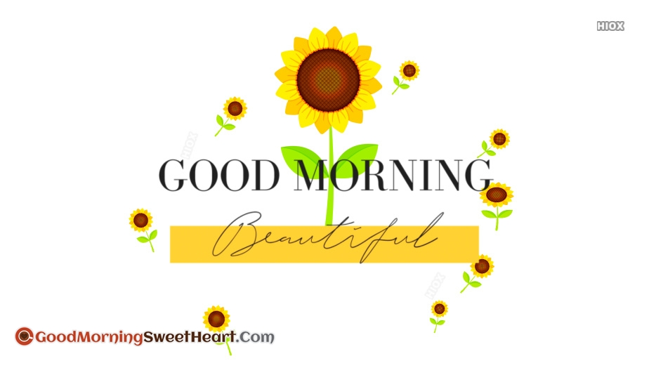 Good Morning Beautiful Flower