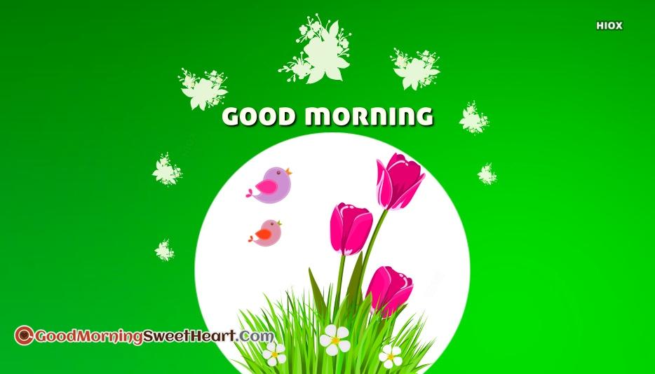 Beautiful Good Morning Sweetheart Images