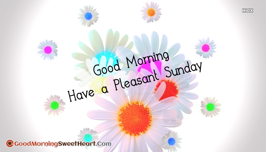 Good Morning Have A Pleasant Sunday