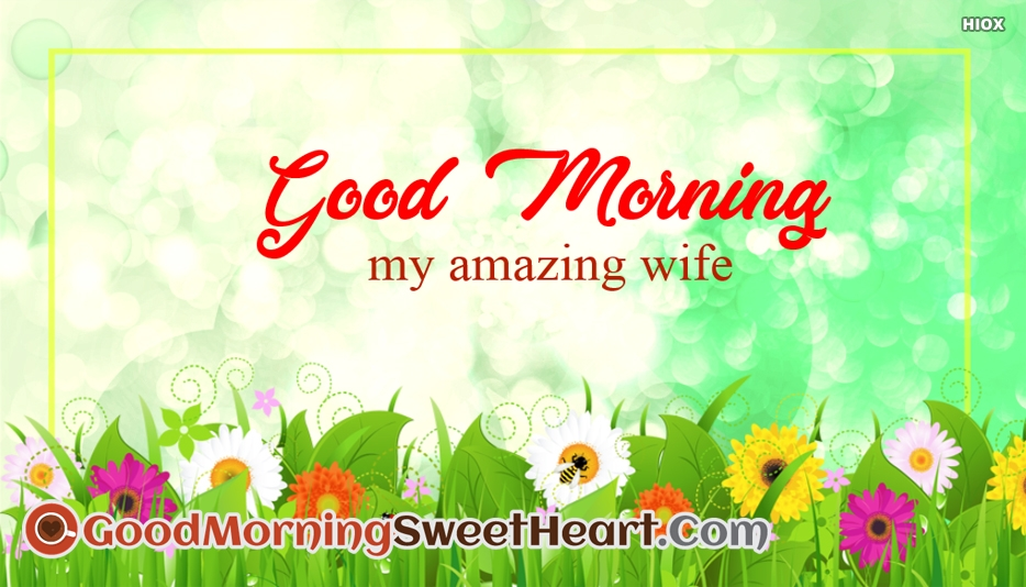 Good Morning My Amazing Wife