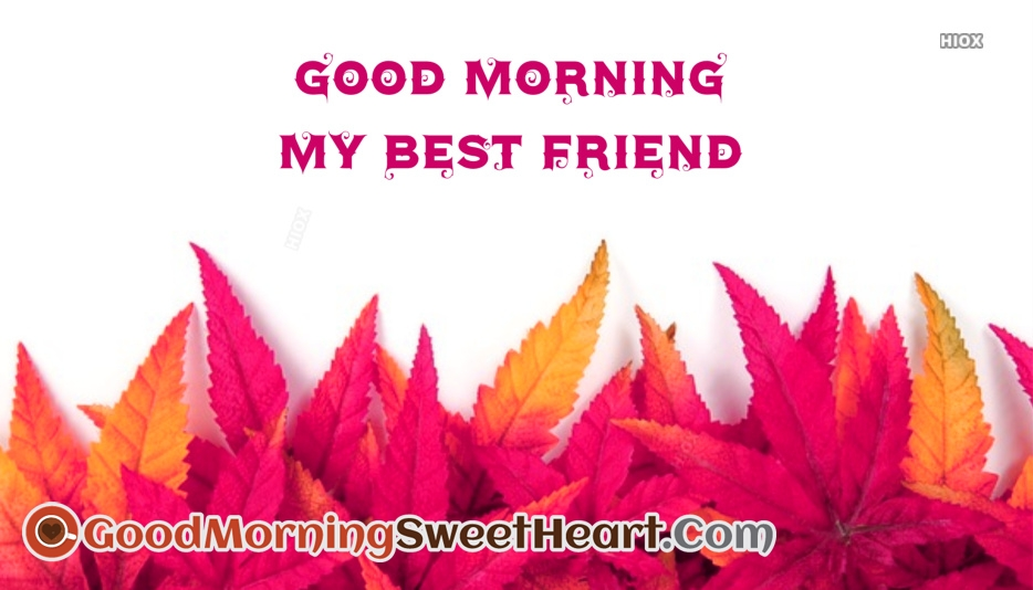 Good Morning Messages For Special Friend