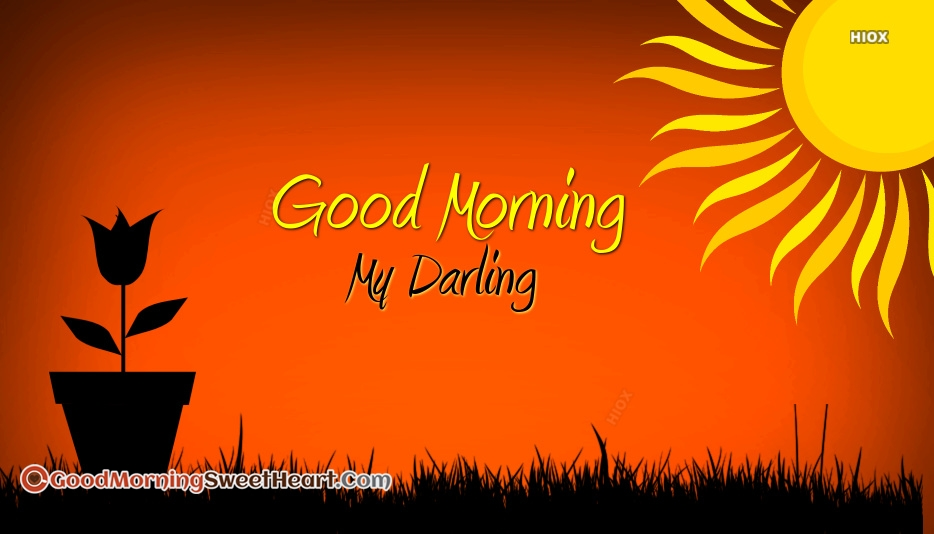 Good Morning Darling Images
