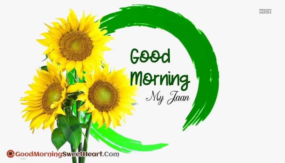 Good Morning My Jaan Image