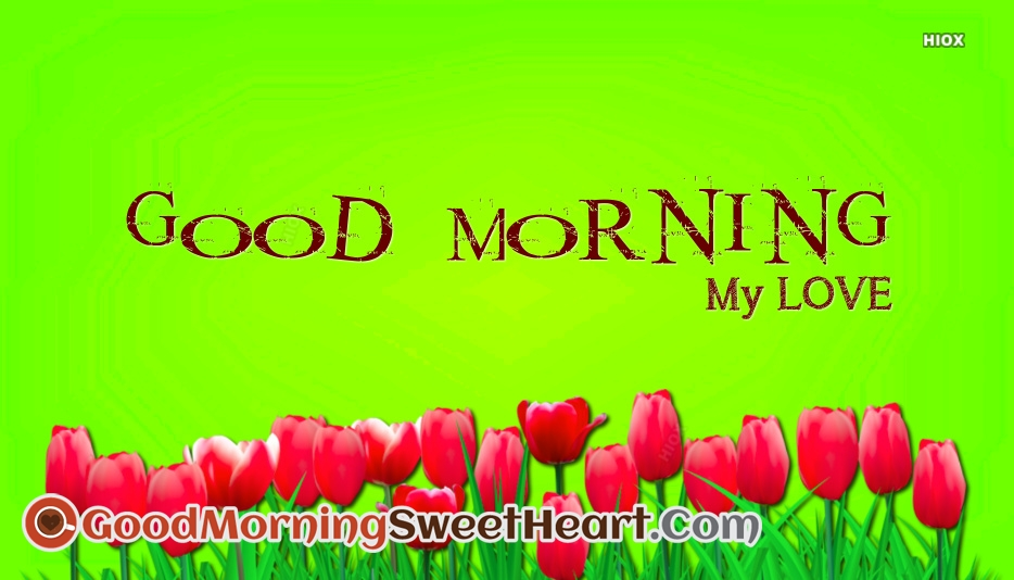 Good Morning My Love @ Goodmorningsweetheart.Com