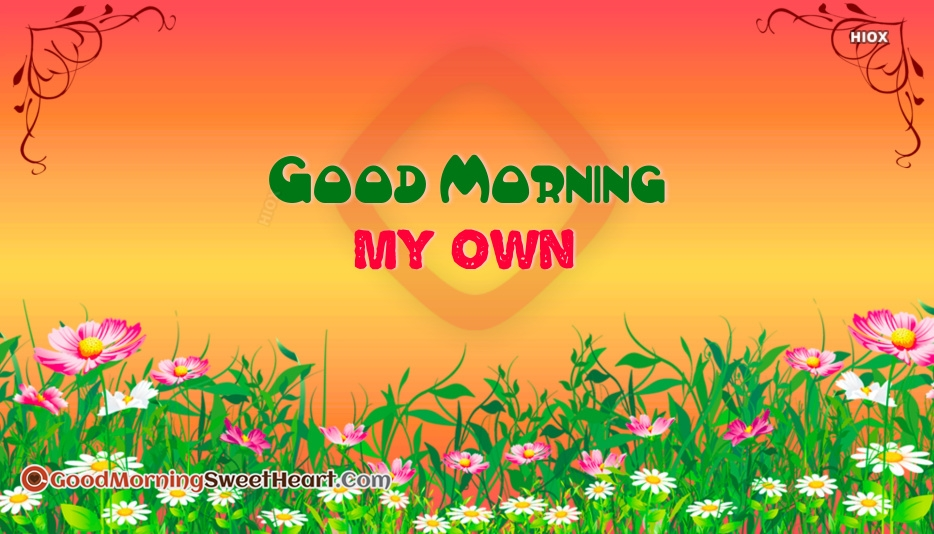Good Morning My Own