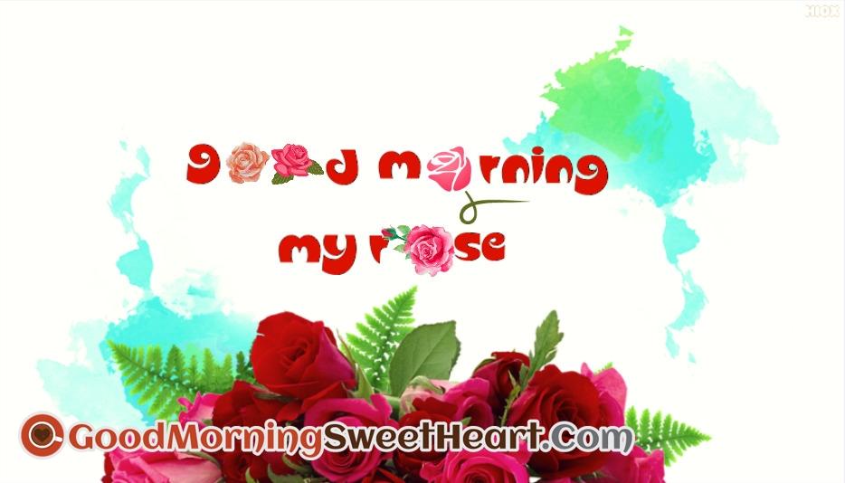 Good Morning My Rose