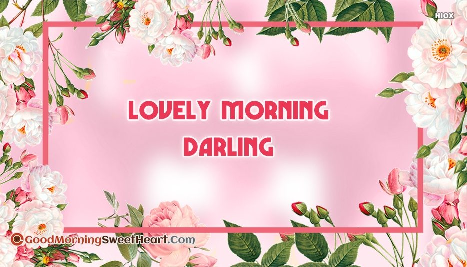 Lovely Morning Darling