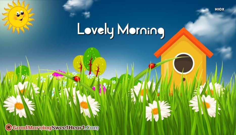 Lovely Morning Hd Image