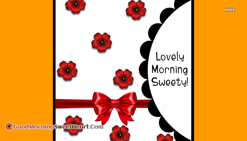 Lovely Morning Hd Wallpaper