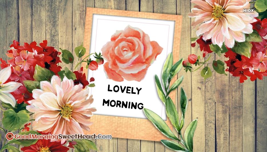 Lovely Morning Rose Goodmorningsweetheart Com