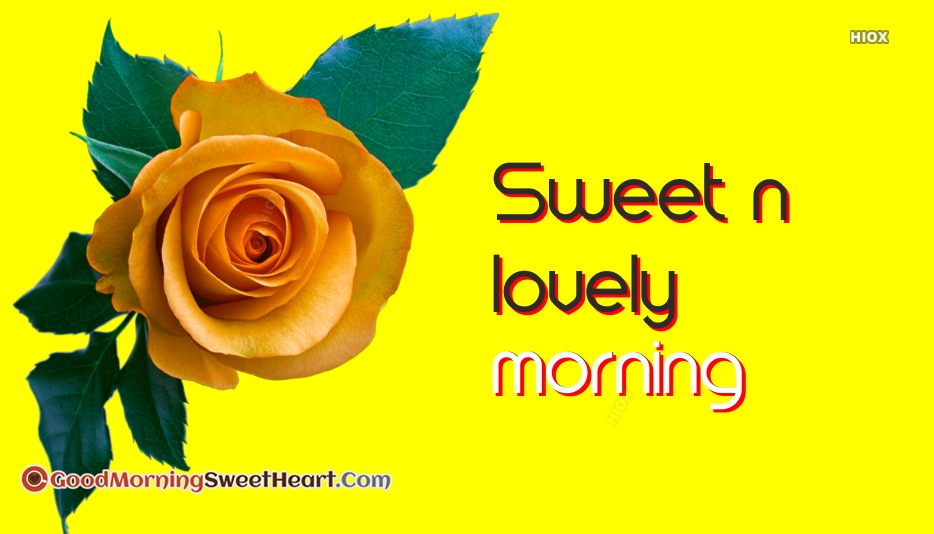 Sweet N Lovely Good Morning Images