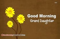 Good Morning Granddaughter