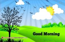 Good Morning Grass