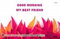 Good Morning My Precious