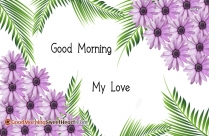 Lovely Good Morning My Love